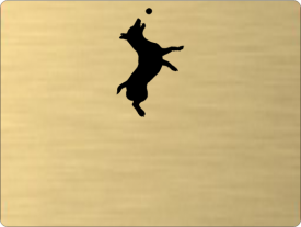 Tabuľka Jack Russell teriér